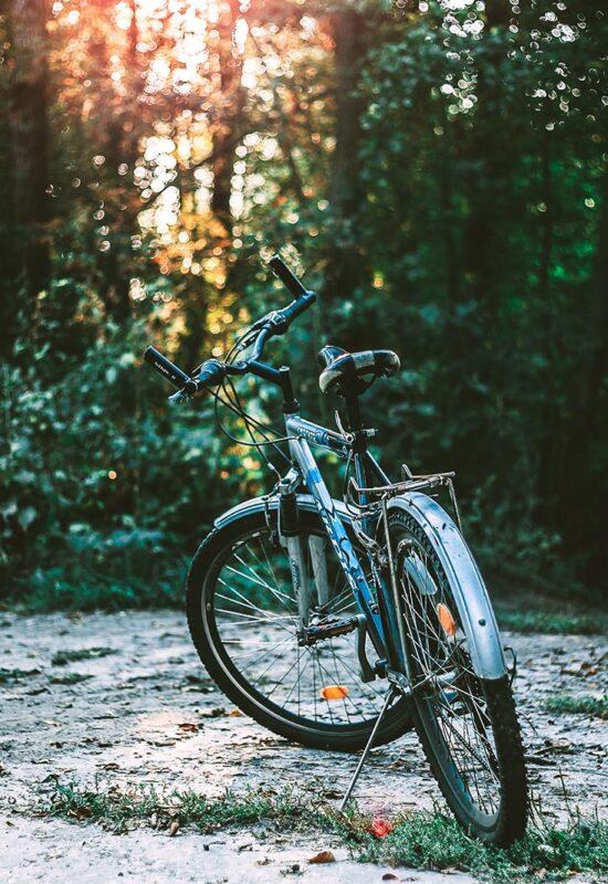 camping-lolotte-kamperen-actief-natuur-fietsen-mountainbike